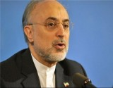 Salehi, IAEA Chief Hold Talks